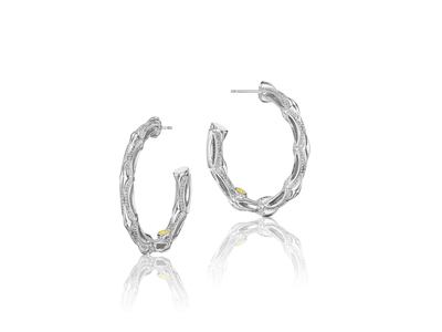 Cropped product listing crescent hoop earrings