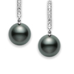 Cropped black south sea cultured pearl lever back earrings